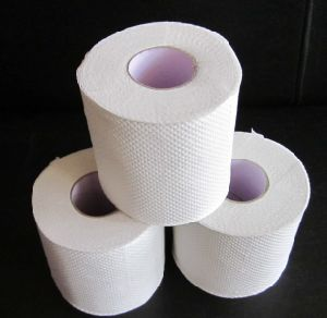 Toilet Paper, Toilet Tissue, Tissue Paper for Household Bathroom pictures & photos