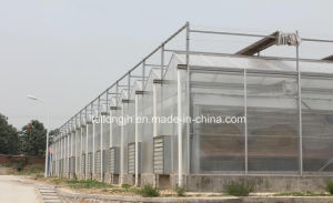 PC-Sheet Tunnel Greenhouse for Farm pictures & photos