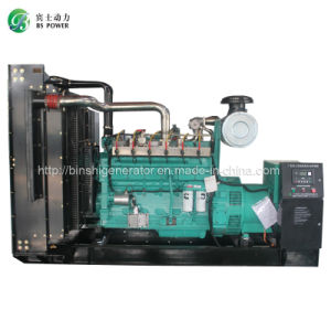 250kVA CNG Electronic Generator Set pictures & photos