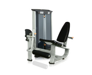 Community Healthy Gym Equipment-Leg Extension (V8-510) pictures & photos