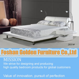 Bed Room Furniture Designs (2831) pictures & photos