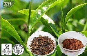Black Tea Extract: Theaflavins 40%, 60%; Polyphenols 25%, 40%. pictures & photos