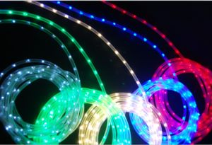 Copper Wire Rope Light with LED for Decoration Light pictures & photos