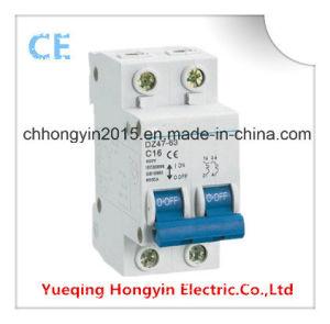 Dz47 Silver Contact 2p 16A Mini Electrical Circuit Breaker pictures & photos