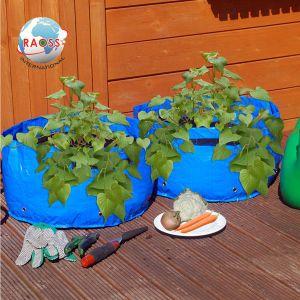 UK Market Hotsales Garden Plant Bags pictures & photos