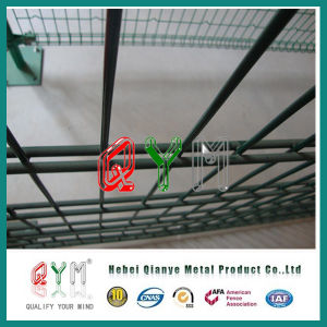 Double Wire Security Fence /Galvanized Welded Double Wire Fence pictures & photos