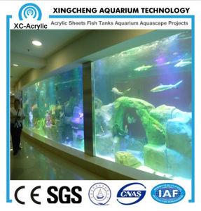Large Transparent Acrylic Sheet for Aquarium by Customized/ Thick Acrylic Sheet of Acrylic Sheet Aquarium pictures & photos