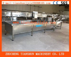 Vegetable Washer/Vegetables Washing Machine/Lettuce Washer/Cabbage Washer/Fruit Washer Tsxq-50 pictures & photos