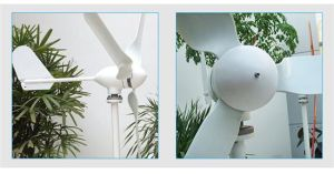 Solar Panel & Wind Generator Wind Power pictures & photos