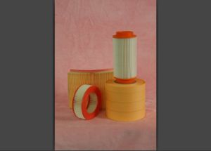 Oil Filter Paper (HTJ1135) pictures & photos
