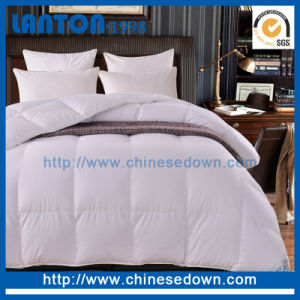 Summer Lightweight 100% Hungarian White Goose Down Comforter pictures & photos