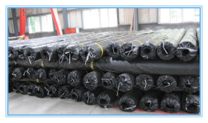 Factory Supply Waterproofing Composite Geomembrane for Land Fill pictures & photos