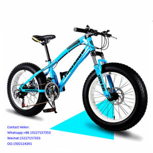Cheap Carbon Fat Tire Bike Mountain Bike (ly-a-6) pictures & photos
