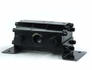 Hydraulic Gear Motor Type Synchronous Flow Divider pictures & photos