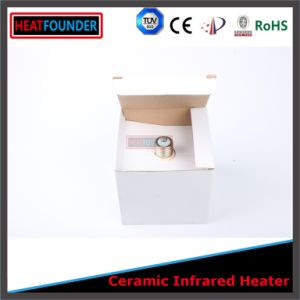 Electric Radiant Heater Light Infrared Heater pictures & photos