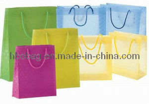Many Color PP Advertising Promotional Bag (HBO20001)