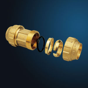 Brass Pipe Fittings (MK-08101) pictures & photos