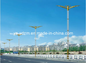 LED Street Light Pole (XD-D011) pictures & photos