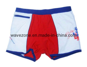 Men′s Swim Trunk (WZM-013)