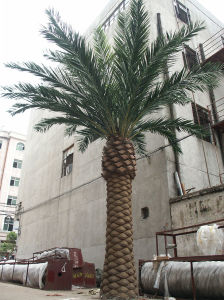 Indoor&Outdoor Artificial Date Palm Tree (for landscaping decoretion)
