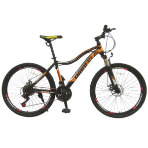 Chinese 21sp Index Steel Mountain Bicycle Bike