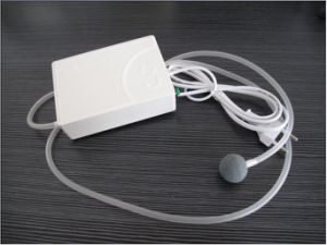 Portable Ozonizer Home Air and Water Sterilizer CE Approved Ozone Generator pictures & photos