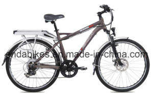 Electric Bicycle/Bike (TDE26M005)