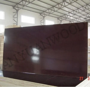 Phenolic Film Faced Plywood / Formwork Plywood pictures & photos