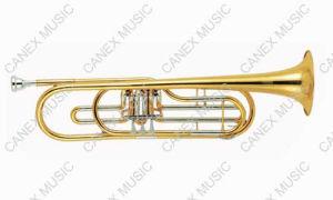 Bass Trumpet (BTR-400L) /Bass Trumpet pictures & photos