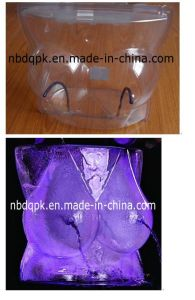 Plastic Ice Luge Mould for Party pictures & photos