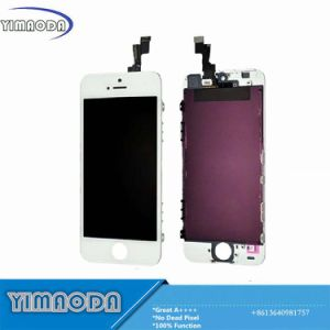 Original Mobile Phone LCD Touch Screen for iPhone 5s LCD pictures & photos