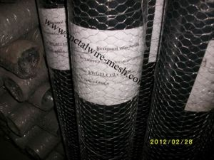 Stainless Steel Hexagonal Wire Mesh for Protection pictures & photos
