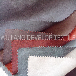 Polyester Micro Fiber Trico Suede Fabric (DT2019)