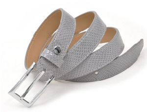Fashion PU Belt for Women′s Garments (GC2012293)