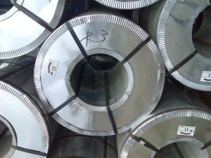 Galanized Steel Coil