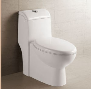 Siphonic One Peice Toilet (D0-A072)