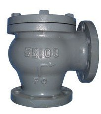 JIS-Marine-Cast Iron Lift Check Angle Valve pictures & photos