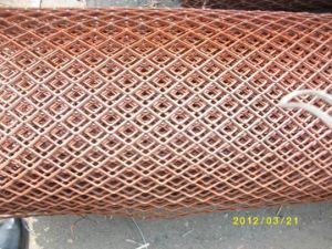 Power Coated Expanded Metal Mesh pictures & photos