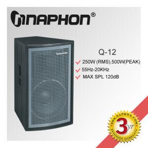 PRO Audio Speaker (Q-12)