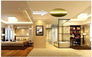 LED 230V / 110V 5050SMD ETL LED Strip Light pictures & photos
