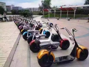 200kg Load Vacuum Tyre Harley Electric Scooters with 60V 12ah Li Battery /1000W Brushless Motor