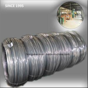 Garage Door Extension Torsion Spring Steel Wire pictures & photos