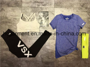 Quickly Dry Running Clothing of Women/Lady, Fitness Wear, , Sports Suit pictures & photos