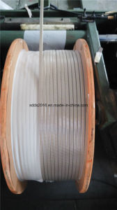 F46 Coating Polyimide Film for Magnet Wire in Wind Power Motor Field pictures & photos