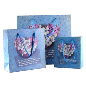 Luxury Paper Package Handle Bag, Gift Bag with Ribbon pictures & photos