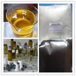 Anabolic Steroid Chemical Testosterone Enanthate Steroid for Weight Loss pictures & photos