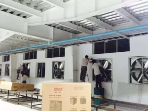 Guangzhou Heavy Duty Wall Mounted Greenhouse Exhuast Fan pictures & photos