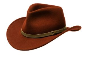 Brown Felt Cowboy Outdoor Hat pictures & photos