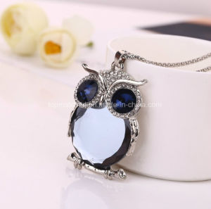 Fashion Sweater Owl jewelry Ariat Necklace pictures & photos