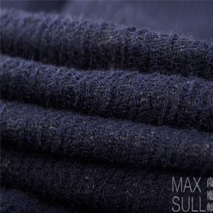 Wool /Cotton /Acrylic Mixed Wool Fabric for Autumn Season in Navy Blue pictures & photos